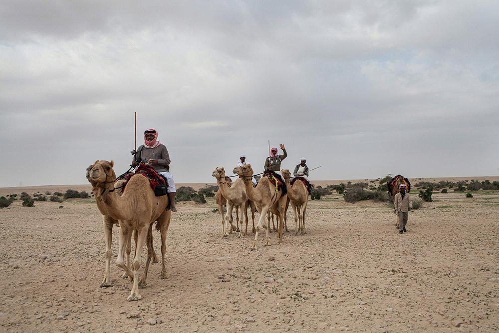 Foto: OLYA MORVAN/AFP/Getty Images